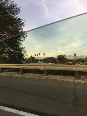LA Beauty